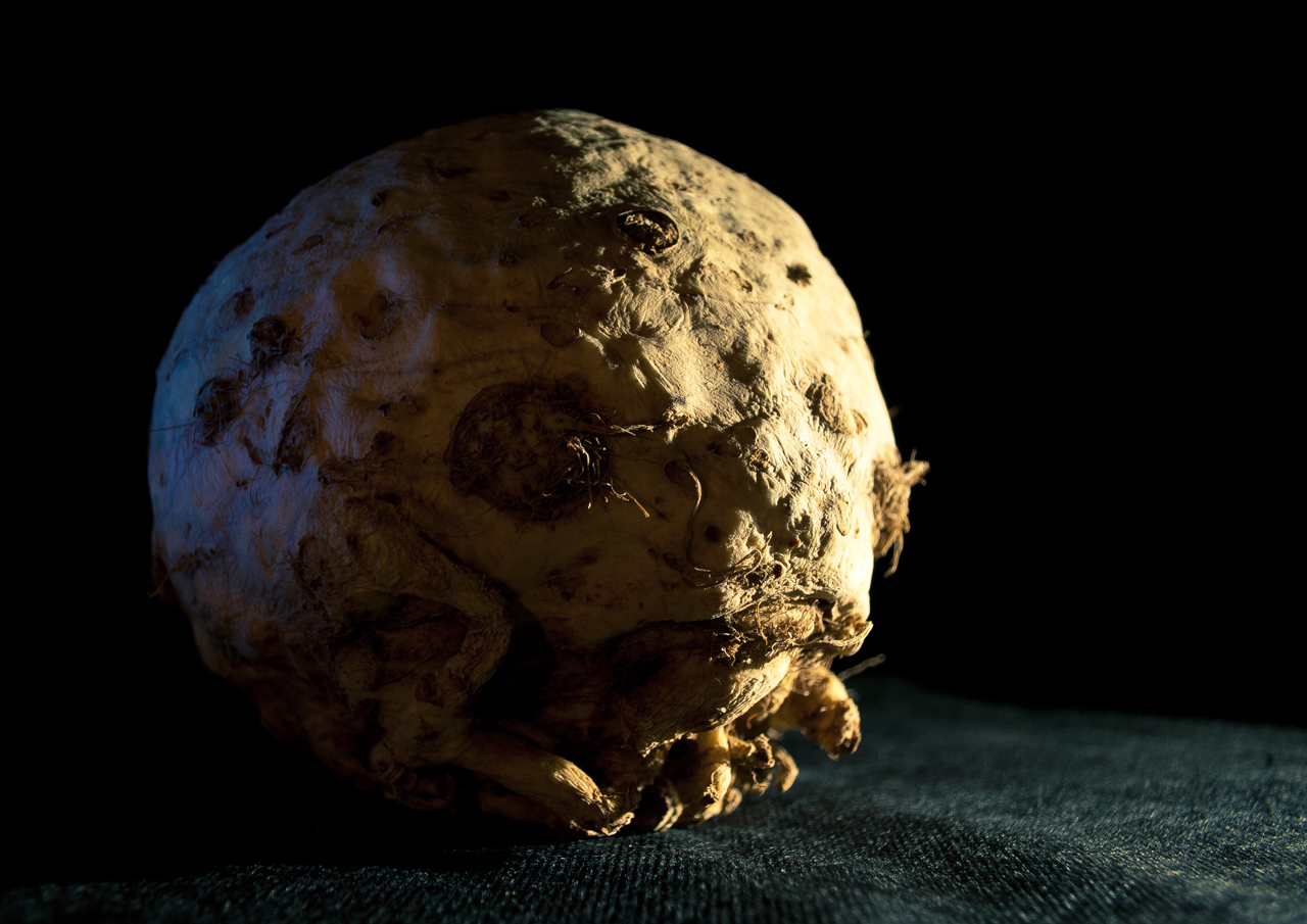 Photo: Celeriac From Outer Space