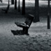 0335_lonely_benches