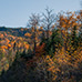 autumn_scenery_2